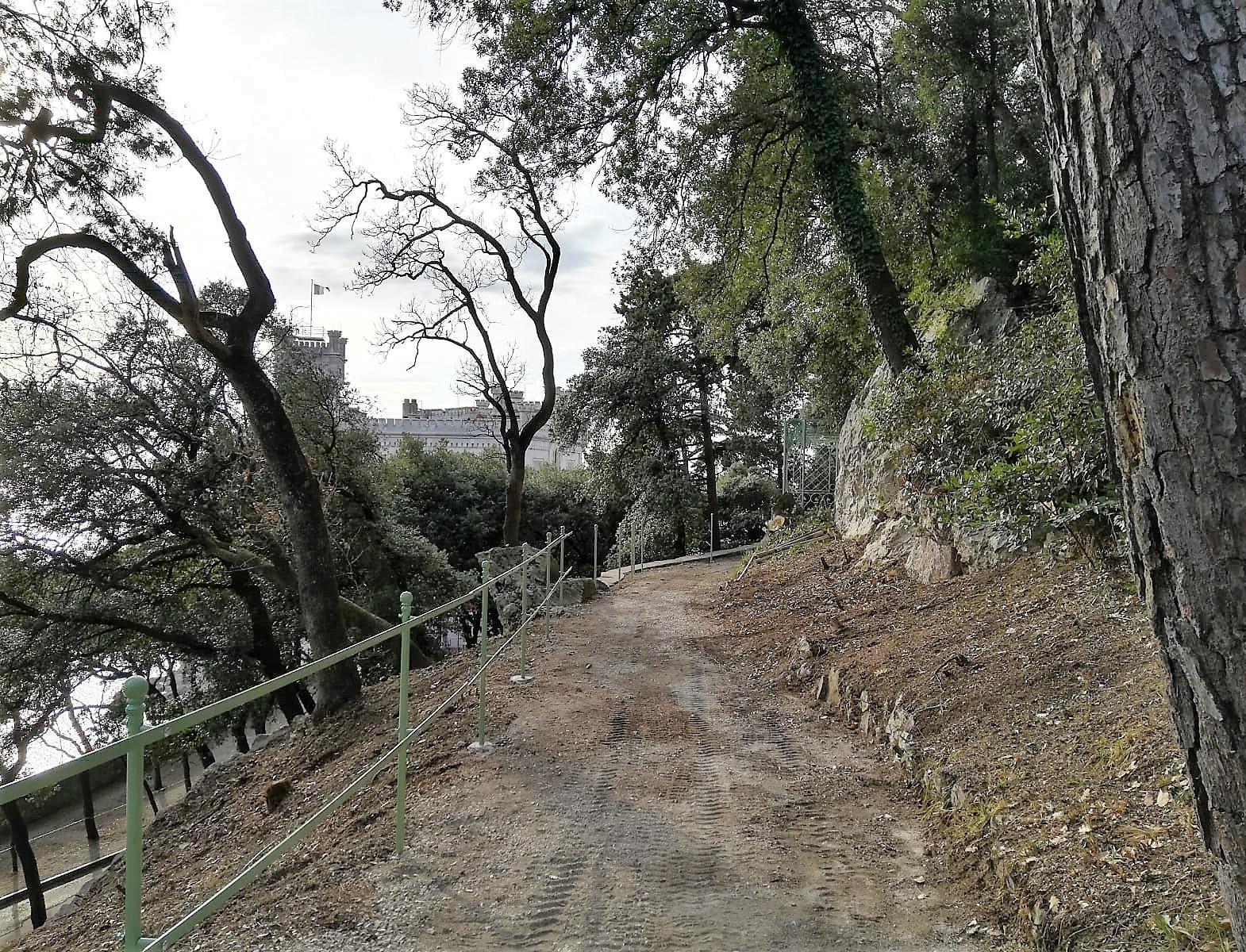 Riapre il sentiero sopra il VIALE DEI LECCI nel Parco di Miramare